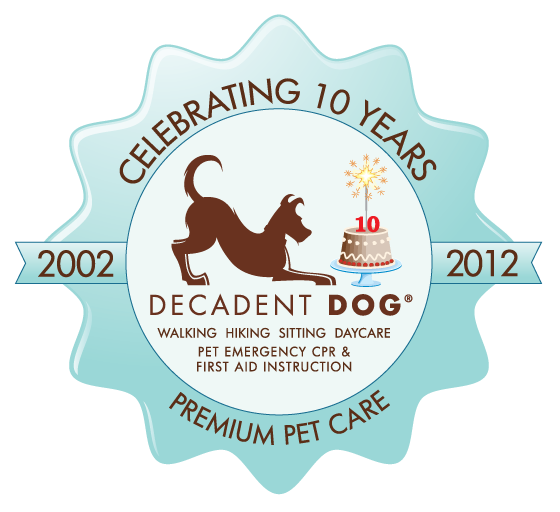 Decadent Dog Anniversary Logo Design