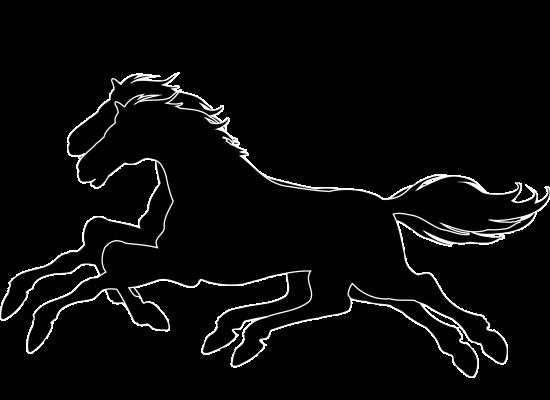 Running Horses Logo Design